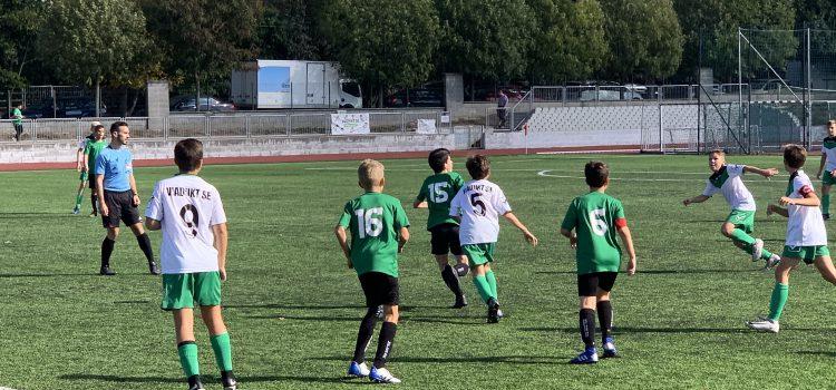 A kedvenc program: foci